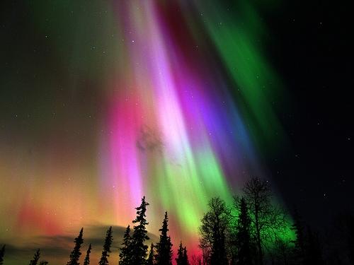 Aurora Bureal